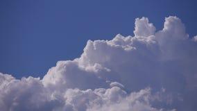 Witte cumulonimbus pluizige wolken die in real time zich op blauwe hemel bewegen stock video