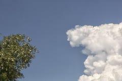 Witte cumuluswolken bij de achtergrond van blauwe hemel Royalty-vrije Stock Foto's