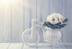 Witte de lentebloemen Royalty-vrije Stock Afbeeldingen