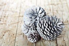 Witte decoratieve denneappels royalty-vrije stock afbeeldingen