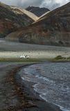 Witte die auto bij Pangong-meer door bergketen wordt omringd Royalty-vrije Stock Foto's