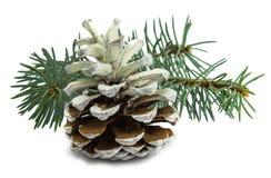 Witte die Kerstmiskegel op witte achtergrond wordt geïsoleerd Royalty-vrije Stock Afbeeldingen