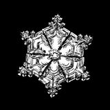 Witte die sneeuwvlok op zwarte achtergrond wordt geïsoleerd royalty-vrije stock afbeelding
