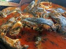 Witte die vissen of Sig in tomaat worden voorbereid Royalty-vrije Stock Fotografie