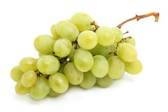 Witte druif Royalty-vrije Stock Foto's