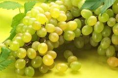 Witte druif Stock Foto's