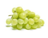 Witte druiven met dalingen van water stock foto