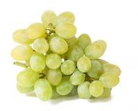 Witte druiven met druppeltjes stock afbeelding