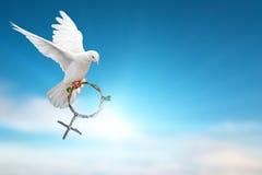 Witte duif die groene tak die in de vorm houden van het Venussymbool op blauwe hemel vliegen Royalty-vrije Stock Fotografie