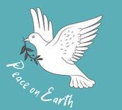 Witte Duif die tijdens de vlucht Olive Branch On Blue Background en met Tekstvrede houden ter wereld Stock Fotografie