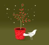 Witte duif (vector) Stock Illustratie
