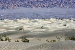Witte duinen in de Vallei NP van de Dood Stock Foto