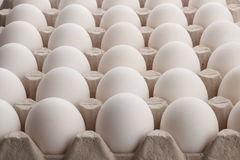 Witte eieren royalty-vrije stock foto's