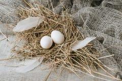 witte eieren die op stro over jute leggen Stock Afbeelding
