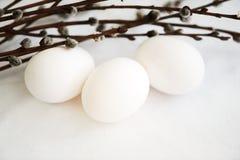 Witte eieren en wilgentakken Stock Afbeelding