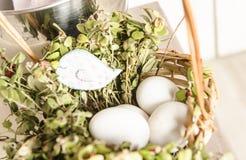 Witte eieren op gras Royalty-vrije Stock Foto's