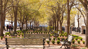 Witte Eiken Tuinen, Batterijpark, Charleston South Carolina royalty-vrije stock foto