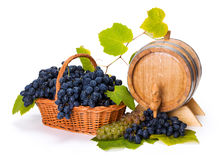 Witte en blauwe druif in mand met vat stock afbeelding