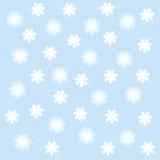 Witte en blauwe flowerses. Stock Fotografie