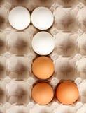 Witte en bruine eieren Stock Foto