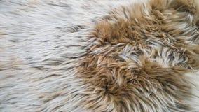 Witte en bruine wol Royalty-vrije Stock Foto's