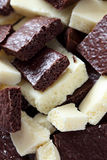 Witte en donkere poreuze chocolade Royalty-vrije Stock Foto's