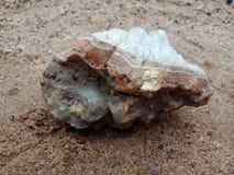 Witte en grijze kristalsteen met textuur op het zand geweven behang als achtergrond, strand Oceaan stock afbeelding