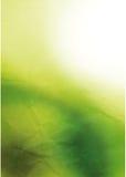 Witte en groene achtergrond Stock Foto