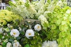 Witte en groene sierbloemen voor feestelijke decoratie van binnenland stock foto