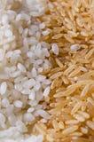 Witte en ongepelde rijst Royalty-vrije Stock Foto