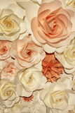 Witte en oranje rozen Royalty-vrije Stock Foto