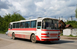 Witte en rode bus Royalty-vrije Stock Fotografie