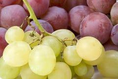Witte en rode druiven royalty-vrije stock foto's