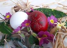 Witte en rode paaseieren met stro en wilde kruiden stock fotografie