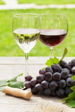 Witte en rode wijnglazen en rode druif Royalty-vrije Stock Afbeeldingen