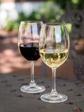 Witte en rode Zuidafrikaanse wijnen in glazen in een tuin Royalty-vrije Stock Foto's