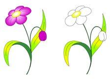 Witte en roze bloeiende bloemen vector illustratie