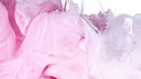 Witte en Roze Inkt in Water stock video