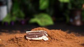 Witte en zwarte chocoladestukken die in cacaopoeder vallen in langzame motie op een zwarte lijst met aardige groene installaties stock videobeelden