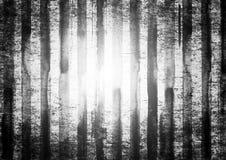 Witte en zwarte gestreepte grungeachtergrond Stock Foto's