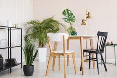 Witte en zwarte stoel bij houten lijst in eetkamerbinnenland met installaties en gouden lamp Echte foto stock fotografie