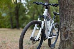 Witte fiets die zich in verlaten park bevinden Mooie dag, de vroege herfst of de zomer, melancholische kalme stemming, blauwe atm royalty-vrije stock foto