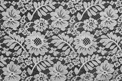 Witte fijne kant bloementextuur Royalty-vrije Stock Foto's