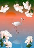 Witte flamingo en bloemen Royalty-vrije Stock Afbeelding