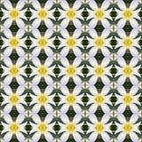 Witte Frangipani-bloemen, een boeket van naadloze bloemen royalty-vrije illustratie
