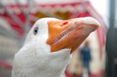 Witte gans Royalty-vrije Stock Afbeelding