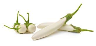 Witte geïsoleerde aubergine Royalty-vrije Stock Fotografie