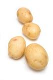 Witte geïsoleerder aardappels. Stock Afbeelding