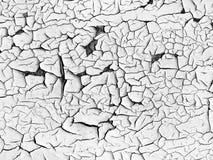 Witte gebarsten verf. Uitstekende achtergrond Stock Foto's