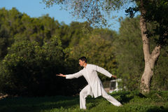 Witte geklede mens het praktizeren tai-Chi in het park Royalty-vrije Stock Afbeelding